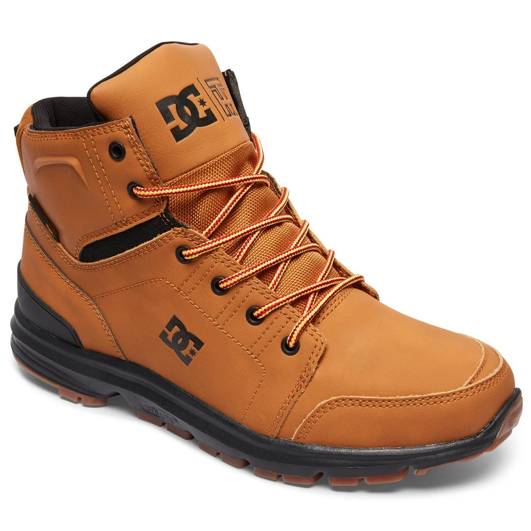 Chaussures montantes DC Shoes Torstein swSGYuP9VZ