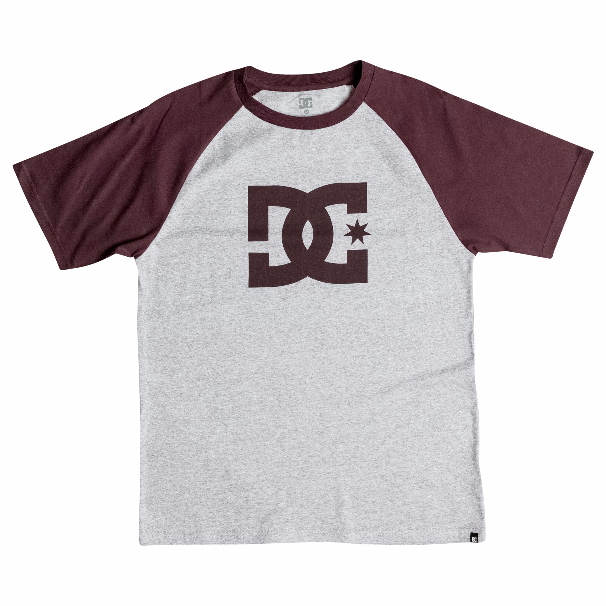 Polo DC Shoes STAR RAGLAN