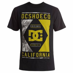T-shirt manches courtes DC Shoes WANDERER