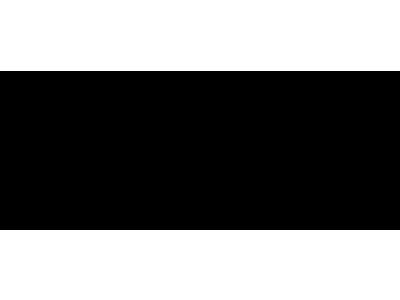 Logo Guns