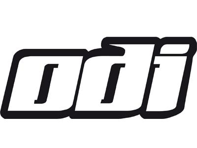 Logo Odi
