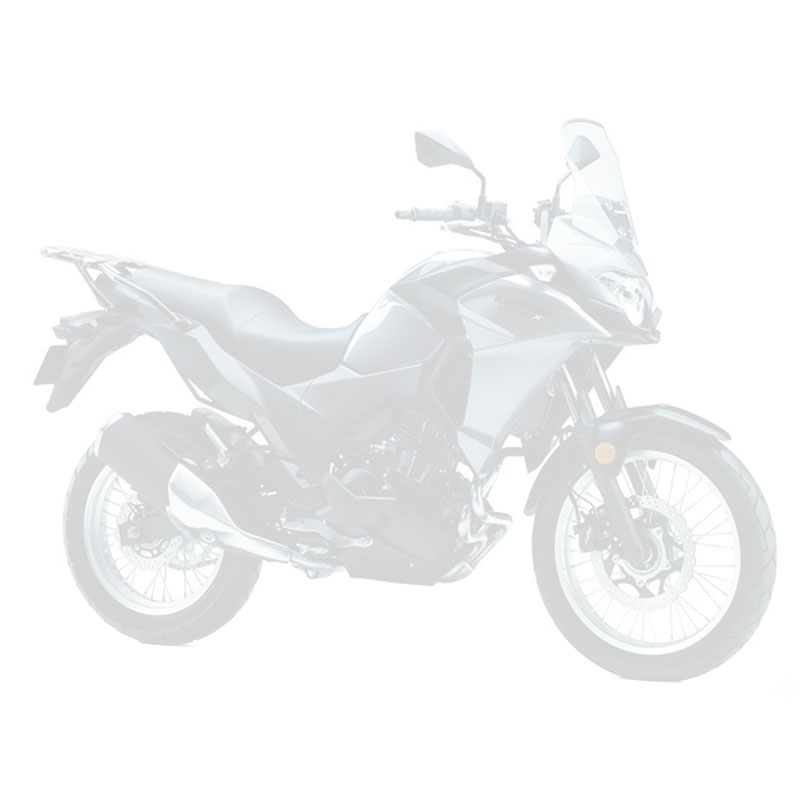 KAWASAKI 300 VERSYS-X 2020