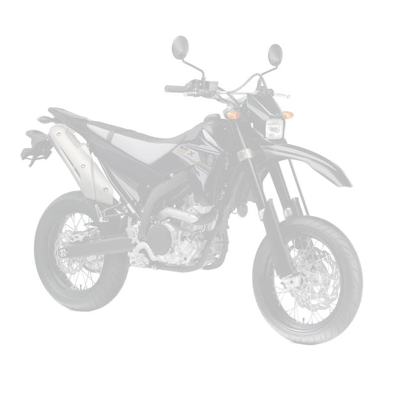 YAMAHA 250 WR X 2016